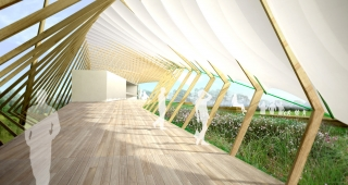 Paysage sportif - Agence architecture sport