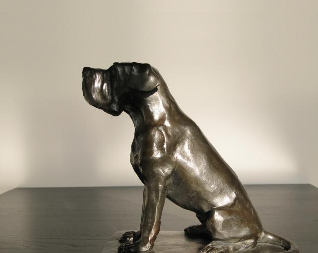 Dogue de bronze pour Pierre Ferret - Agence architecture équipements sportifs, culturels et logements